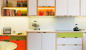 Whats The Best Material For Kitchen Cabinets In India