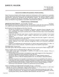 Resume Format Google Docs Custom Google Resume Format Gyomorgyuru