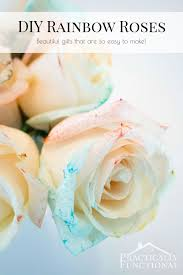 diy rainbow roses with food coloring and water great tips on how to make the