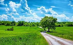 Beautiful summer day wallpaper - Nature wallpapers - #39604