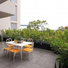 Small Picture Crows Nest Balcony Garden Design Sydney