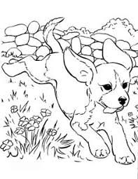 Small Picture dog color pages printable Cute puppy pictures to color 085 dog