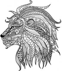 Small Picture Detailed Lion Advanced Coloring Page A to Z Teacher Stuff