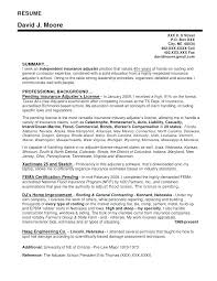 Cover Letter For Claims Adjuster For Insurance Images Claims