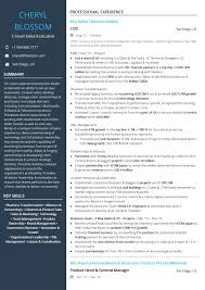 Sample Mis Executive Resume C Level Sales Executive Resume Sample By Hiration