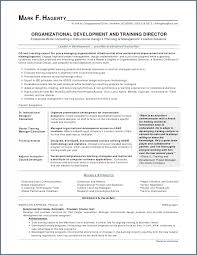 Comprehensive Resume Format Custom Computer Software To Put On Resume Fresh What To Put A Resume For