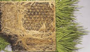 Grass Roots – Selvedge Magazine