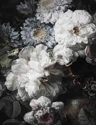 Anewall Dark Floral Wallpaper Mural