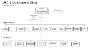Uscis Organizational Chart Immigration Lawyers Us