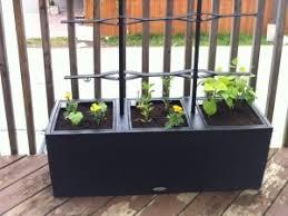 apartment patio garden. Apartment Patio Garden O