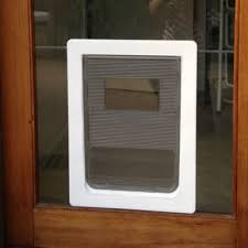 large dog door in glass sliding glass