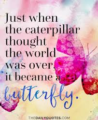 Butterfly Quotes Stunning Just When The Caterpillar Thought The World Was Over It Became A