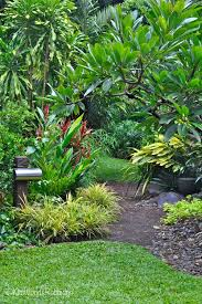 Small Picture Tabu Tropical Paradise in Cairns Queensland Garden Pinterest