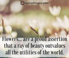 Beauty Of Flowers Quotes Best Of 24 Beautiful Flower Quotes SayingImages