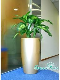 tall plant pots tall flower pots tall flower pots flower pot stands designs big outdoor flower pots tall plant tall flower pots tall plastic plant pots