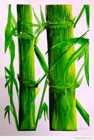 watercolor painting of big bamboo trees