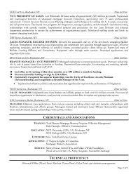 don goodman resume writer resume update executive resume. it project  manager resume cyrinesdesign