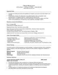 Combination Resume Format From American Resume Sample Roho 4senses