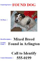 how to make lost dog flyers found pet flyer under fontanacountryinn com
