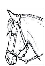 La Testa Di Un Cavallo Da Stampare E Da Colorare Per Bambini