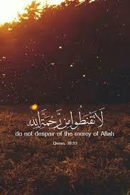IUVM Archive Beautiful Quran Quotes Delectable Quotes Quran