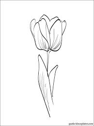Kleurplaat Tulp Gratis Kleurplaten