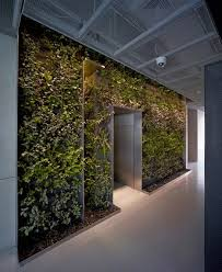 green wall office. taoyuanju office by vector architects green wall