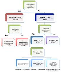 Flow Chart Of Research Design Cisn How Cancer Is Studied Types Of Epidemiology Studies
