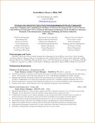 Software Project Manager Resume Sample India New Project Manager