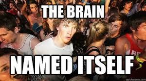 faith-in-humanity-restored-meme-brain.jpg via Relatably.com