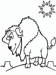 Small Picture Animals Page 16 Badger Animals Coloring Pages Bighorn Sheep