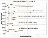 Ballistic Chart For 30 06 Winchester 30