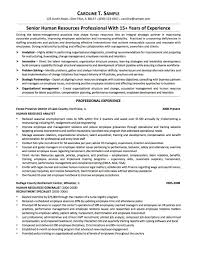 Chicago Resume Template Word How to change resume template in word best of resume samples 6