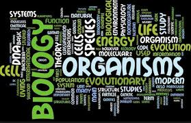 Image result for biology