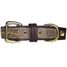 gucci dog collar. gucci dog collar