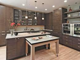 Designer Kitchen Door Handles Awesome Kitchen Contemporary Kitchen Cabinets Glamorous Furniture