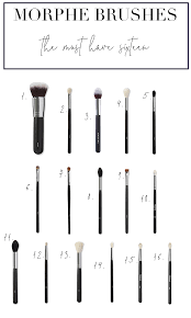 must have makeup brushes from morphe these are the top six brushes from the brand