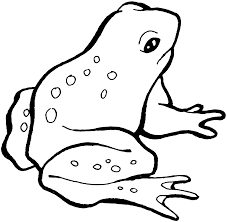 Small Picture Small Frog Ready Hopping Coloring Pages For Kids cSy Printable