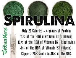Spirulina Benefits 7 Reasons To Try It 1 Major Caution