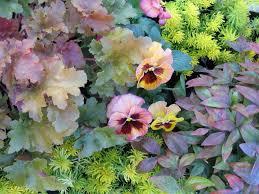 25 UltraCozy Fall Container Garden Ideas  HGTVContainer Garden Ideas For Fall