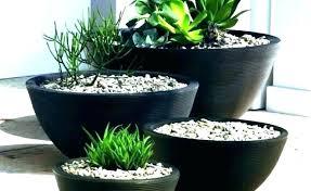 large outdoor flower pots outdoor flower pots decorative flower pots large decorative pots large outdoor plant