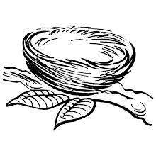 Bird Nest Coloring Page Truyendichinfo