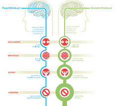 Fixed Vs Growth Mindset Chart Heres Why Your Attitude Is More Important Than Your