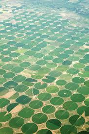 irrigation reinke center pivots
