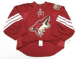 Cosidos De Cut Equipo Jersey Coyotes Home Emitido Goalie Personalizaci�n Jerseys Personalizados Arizona Hombres Hockey Mayorista dbfeeacfbfd San Francisco 49ers Blog Web Page