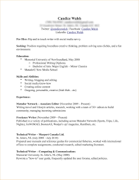 Additional Information On Resume Examples Additional Information On Resume Examples Examples of Resumes 1
