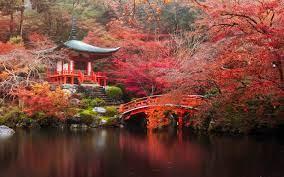 Japan Autumn Wallpapers on WallpaperDog
