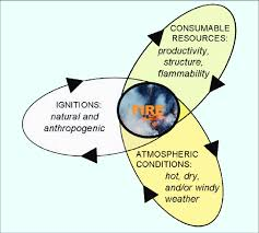 The pyrogeography framework includes vegetation resources to consume,... |  Download Scientific Diagram