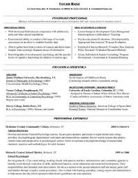 sample college professor resume