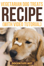 Add oats and stir until mixture has thickened, 5 to 7 minutes. Easy Homemade Hypoallergenic Dog Treats Recipe For Dogs With Allergies Dogs N Stuff